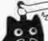 :blackcat_11137: