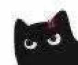:blackcat_11128: